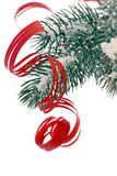 Christmas Tree with Snow. And curled red band as closeup Royalty Free Stock Photos