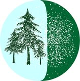 Christmas tree on snow Stock Photos