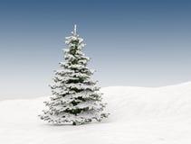 Christmas tree with snow. Blue sky background Stock Image