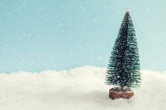 Christmas tree on the snow on blue background Stock Photos