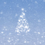 Christmas tree with snow Royalty Free Stock Photos