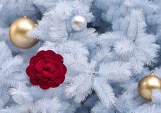 Red velvet rose among white Christmas tree royalty free stock image