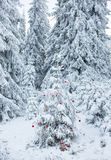 Christmas Tree in Snow-covered Forest. Christmas Tree with red decorations in snow-covered pine forest Royalty Free Stock Photos