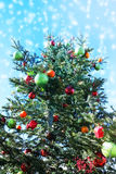 Christmas tree in snow falling, angle of elevation with blue sky Royalty Free Stock Image