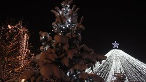 Christmas tree - snow on fir and lights flashing Royalty Free Stock Photography