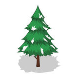 Christmas tree and snow  isolated illustration Royalty Free Stock Photo