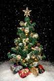 Christmas tree with snow and lights Stock Images