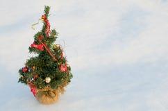 Christmas Tree on Snow Royalty Free Stock Photography