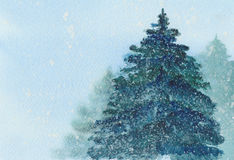Christmas tree in snow watercolor illustration. Stock Images