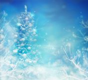 Christmas Tree in Snow. Winter frozen background royalty free stock photos