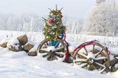 Christmas tree in snowed farm yard Stock Image