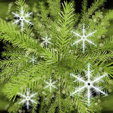 Christmas Tree and snowflakes, abstract background. Stock Photography