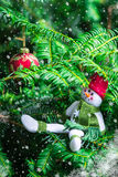 Christmas Tree and A Snowman in the Red Hat and Green Scarf Royalty Free Stock Image