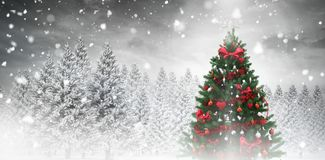Christmas tree in snowy forest Royalty Free Stock Photos