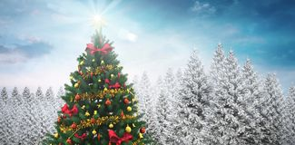 Christmas tree in snowy forest Stock Image