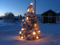 Christmas tree in snowy winter Stock Image