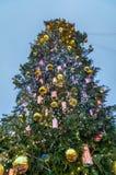 Christmas tree on Sophia Square in Kiev, Ukraine. Christmas tree on Sophia Square in Kiev, the capital of Ukraine royalty free stock images