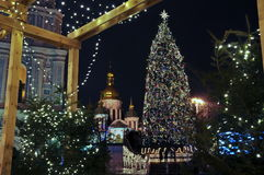 Christmas tree on Sophia Square, night scene. Kiev, Ukraine royalty free stock photography