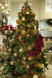 The Christmas tree Royalty Free Stock Photos
