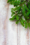 Christmas tree spruce green wooden Royalty Free Stock Photos