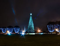 Christmas tree in square Royalty Free Stock Photos