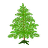 Christmas tree with the stand vector Royalty Free Stock Photos