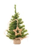 Christmas tree with star. On the white royalty free stock images