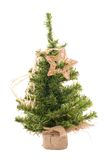 Christmas tree with star. On the white royalty free stock image