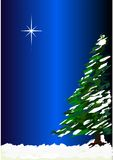 Christmas tree and star Royalty Free Stock Photos