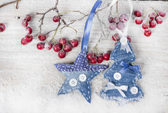 Christmas tree and star on a branch with berries Royalty Free Stock Photo