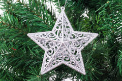Christmas Tree with Star Ornament Stock Images