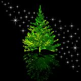 Christmas-tree and stars Stock Photography