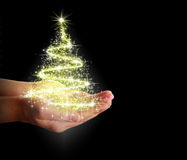 Christmas tree of stars and lights in their hands Stock Photos