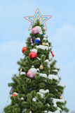 Christmas tree on the street Royalty Free Stock Photos