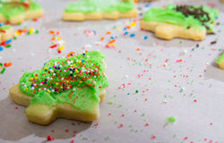 Christmas Tree Sugar Cookings being decorated Royalty Free Stock Images