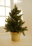 Christmas tree on table. Christmas tree on top of table Stock Photo