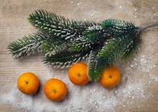 Christmas tree and tangerine with snow Royalty Free Stock Photography