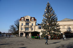 Christmas tree at Teatralna square ,Uzhhorod,Ukraine Stock Photography