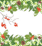 Christmas tree with tinsel, candy canes and rowan branches. Christmas background. Illustration Royalty Free Stock Image
