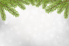 Christmas tree top frame  on silver blurred background Stock Images
