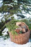 Christmas-tree toy on the basketful of firewood near snowy Christmas-tree Stock Image