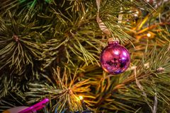 Christmas tree toy on a branch close-up royalty free stock photos