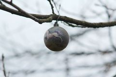 Christmas tree toy hanging on a branch royalty free stock photo