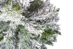 Christmas tree without toys. View from the top royalty free stock images