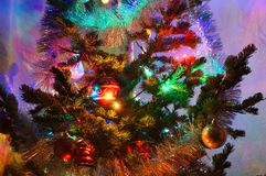 Christmas decorations on pine Royalty Free Stock Photography