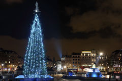 Christmas tree on Trafalgar Square, London Stock Photography