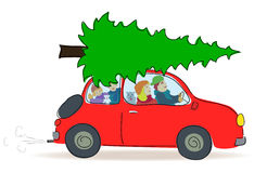Christmas tree transport by car. Family buys fir tree, unsecured luggage, transport by car, luggage on the roof, unsecured roof, Christmas tree on the roof Royalty Free Stock Image