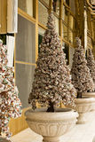 Christmas tree. S made from jewelry stones Stock Images