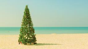 Christmas tree on a tropical beach stock video footage
