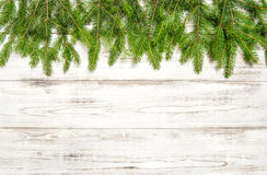 Christmas tree twigs on wooden background. Winter holidays Stock Photos